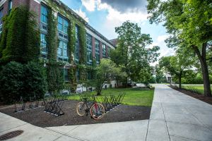 Image shows a green, leafy college campus, looking down a concrete walkway--a second walkway branches off to the left. In the angle between the two walkways is a group of bike racks on a mulched surface. Otherwise the ground is grassy. There is only one bike in the rack. To the left of the walkway is a lawn, some small trees, and a very long, ivy, covered three-story building. To the right is lawn and a row of trees. The sky is partly cloudy. There are no people visible.